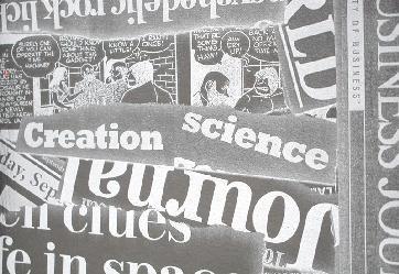 Bufalo Diario 2 Telas para tapiceria