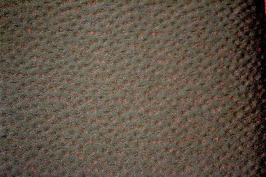 Oporto 2668-2001 Telas para tapiceria